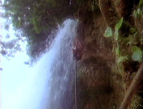 Tarzan | Extrait #2